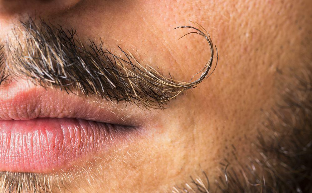 Mustache dali